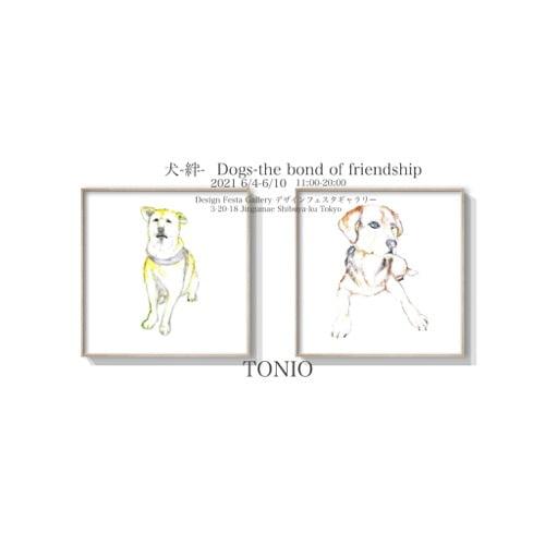 犬-絆- Dogs-The bond of friendship